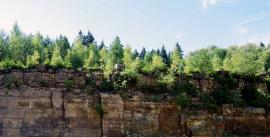 Quarry face in summer